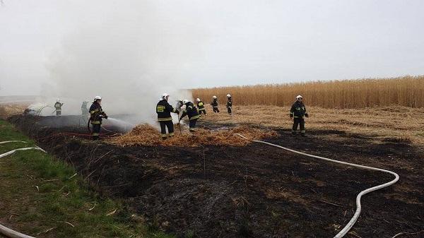 You are browsing images from the article: 12.04.2015r. Laskowo - Kolejny pożar trzciny energetycznej